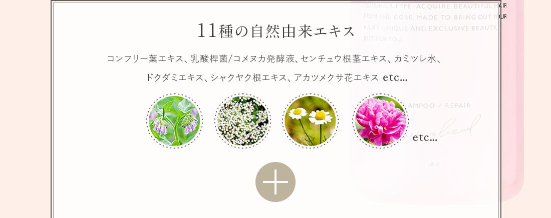 11種の自然由来エキス