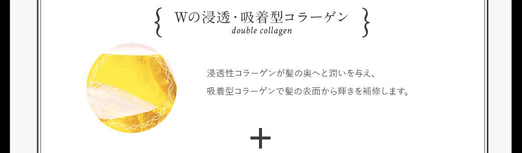 Wの浸透・吸着型コラーゲン